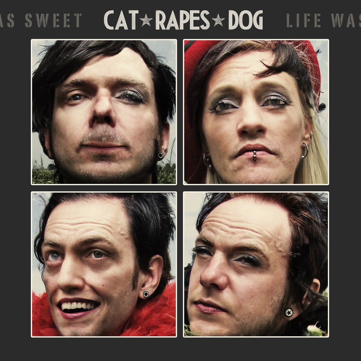 cat rapes dog - life was sweet