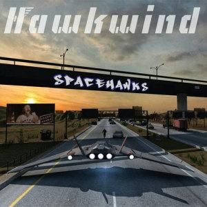 hawkwind spacehawks